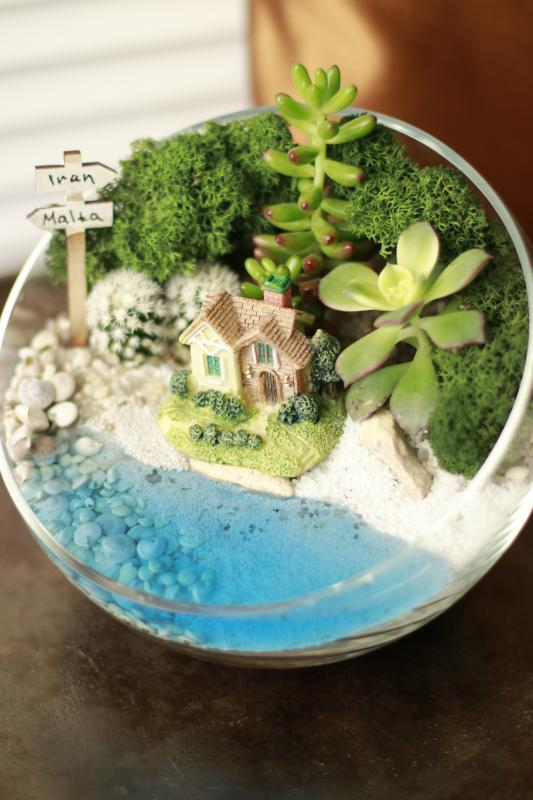 Мини-сад E0052 с имитацией воды (размер L)