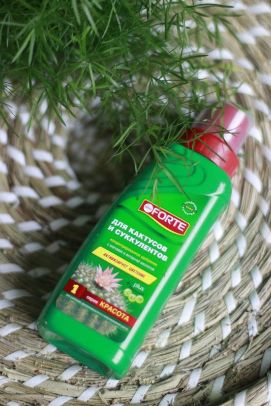 Комплексное удобрение для кактусов и суккулентов