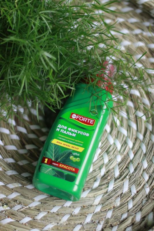 Комплексное удобрение для фикусов и пальм ( яркая окраска листьев)